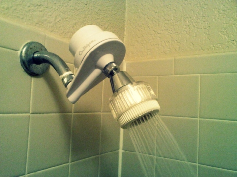 A shower filter, which runs about 40-80 bucks on Amazon, keep out much of the chlorine and other chemicals out of the water I shower in. People don't realize that chemical are also absorbed into the skin. When we're exposed to small amounts, there, more than likely, won't be much harm done. But, think about how many showers and baths we take a year. Chemicals like flouride and chlorine cause damage to your cells, on the molecular level, which lead to VERY BIG problems later (cancer, auto-immune disorders etc.)